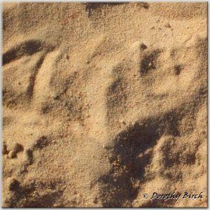 River Silica Sand