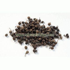Uziza Seeds