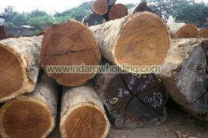 Zingana Wood Logs