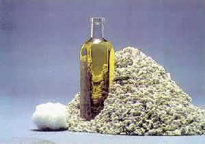 Natural Cotton Seed Oil