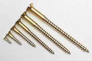 Brass Screws 02