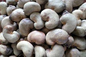 Whole Raw Cashew Nuts