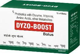 Dyzo-Boost Bolus