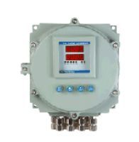 Flameproof Dual Channel Gas Monitor