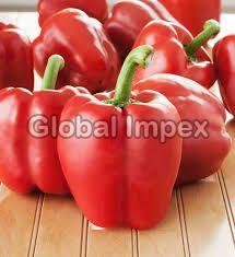 Fresh Bell Pepper Red