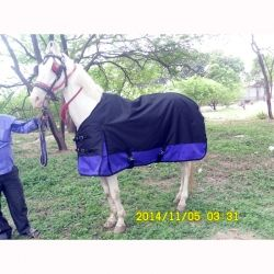 Waterproof Horse Blankets