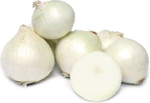 Organic White Onion