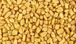 Indian Fenugreek Seeds