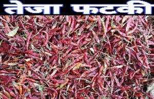 Teja Fatki Dried Red Chilli