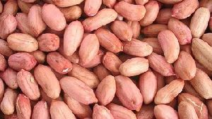 Organic Peanut Kernels