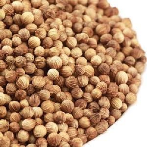 Brown Coriander Seeds
