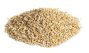 Indian Quinoa Seeds