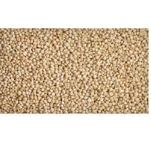 Processed Quinoa Seeds