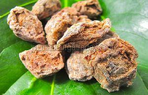 Dried Asafoetida