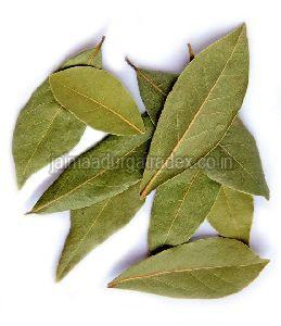 Natural Bay Leaf