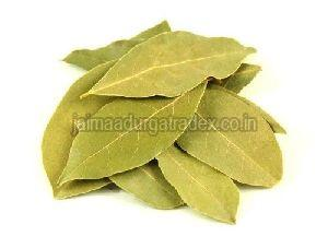 Premium Bay Leaf