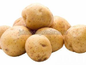 Premium Potato
