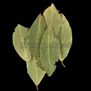 Pure Bay Leaf
