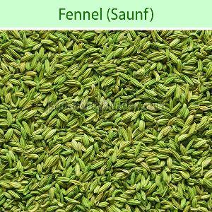 Whole Fennel Seeds