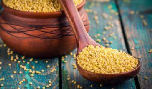 Polished Millet Seeds