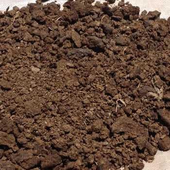Natural Cow Dung Fertilizer