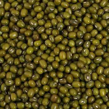 Whole Green Lentil