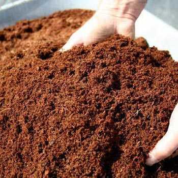 Pure Vermicompost Fertilizer