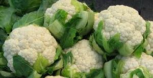 Fresh Hybrid Cauliflower