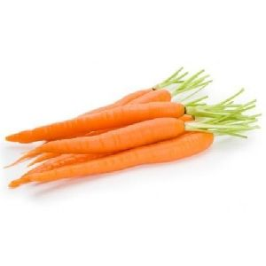 Fresh Natural Carrot
