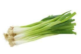 Fresh Natural Spring Onion