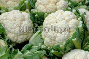 Fresh Natural Cauliflower
