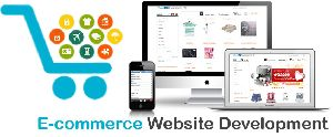 E-Commerce Enabled Website Designing Service