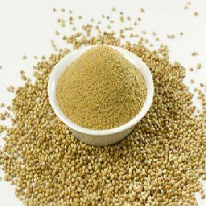 Premium Coriander Powder
