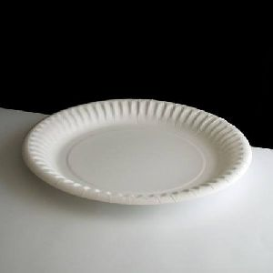 Small Paper Plate