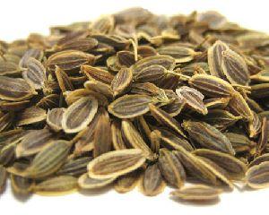 Natural Dill Seeds