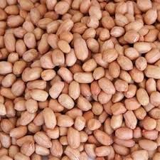 Raw Groundnut Kernels