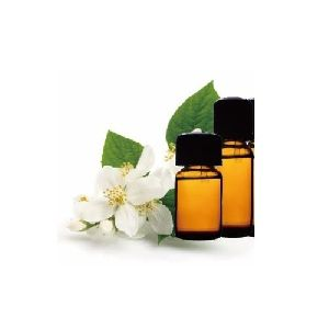 Jasmine Grandi Absolute Oil