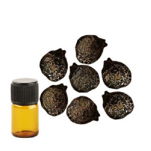 Sugandh Kokila Essential Oil