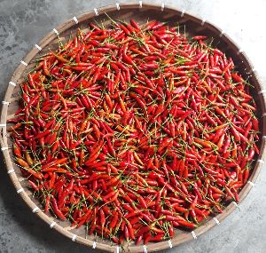 Fresh Birds Eye Chilli