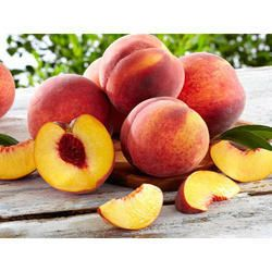 Nectrine Peach