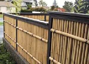 Bamboo Regular Fence