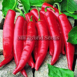 Hybrid Hot Pepper Seeds