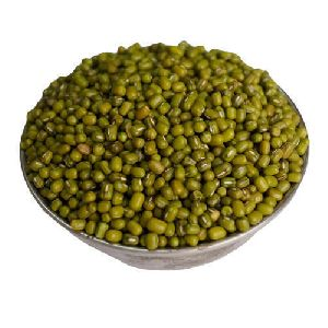Indian Green Moong