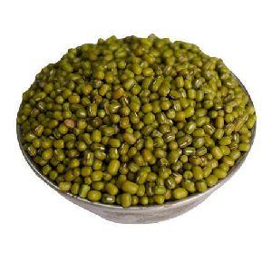 Indian Green Moong