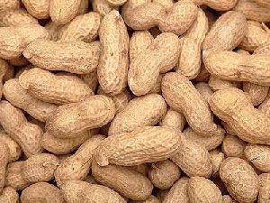 Natural Groundnuts