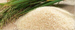 Swarna Parboiled Non Basmati Rice