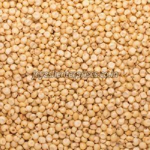 Natural Jowar Seeds