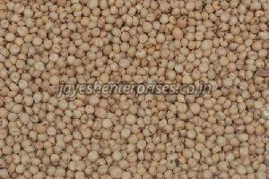 White Jowar Seeds