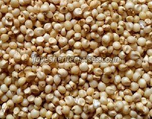 Whole Jowar Seeds