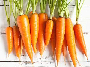 Fresh Orange Carrot